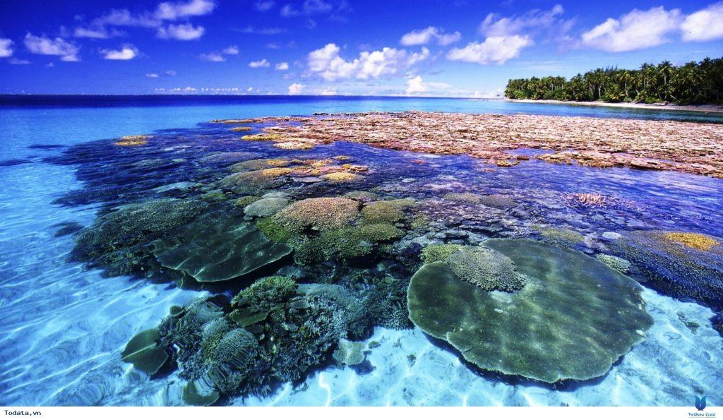 at_coral-island--hon-dao-san-ho-me-hon-du-khach_9cb81ebf16e8b0adc022cf539e3fd6d2